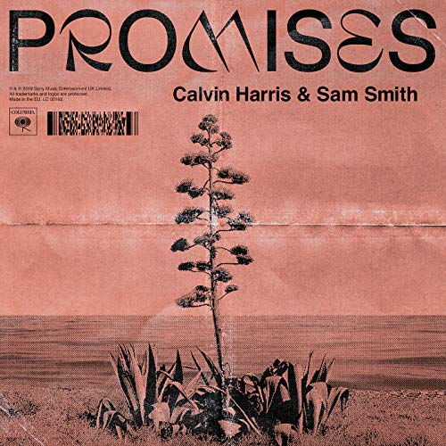 Calvin Harris Sam Smith - Promises