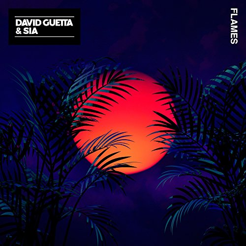 David Guetta And Sia - Flames